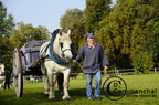 mondial.2011.percheron.92