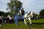 mondial.2011.percheron.96