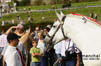 mondial.2011.percheron.148