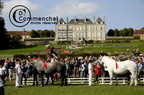 mondial.2011.percheron.151