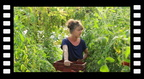 documentaire.16.agri.bio.teaser